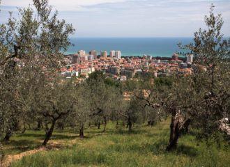 bilutleie Pescara